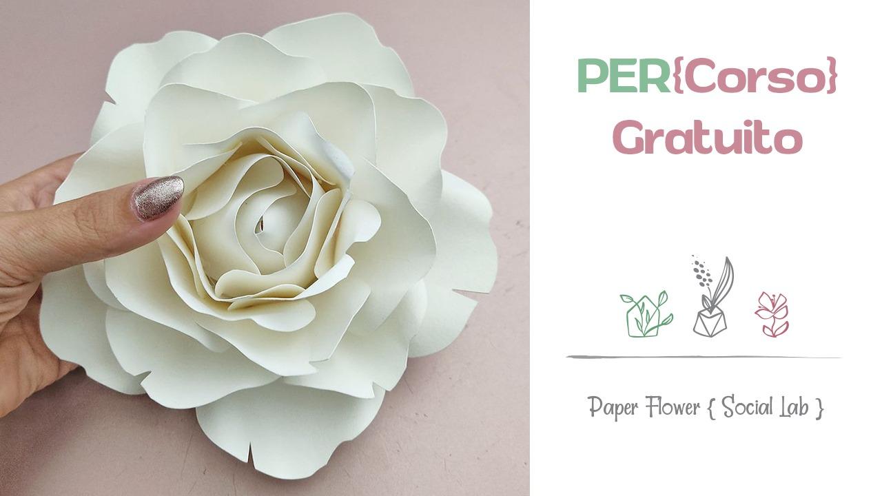 paperflowerspercorsogratuito-1602492357.jpg
